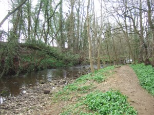 'a happy little stream', tributary of the River Ure
